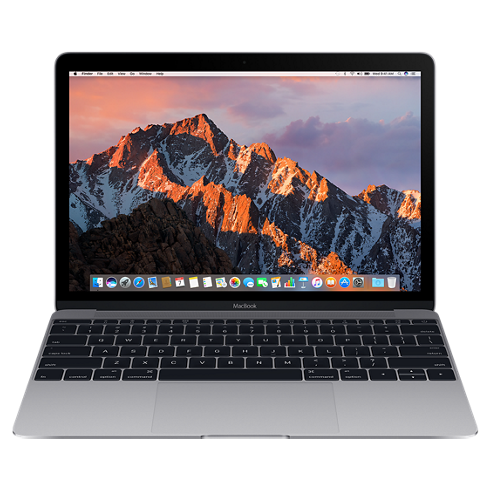 "Ноутбук Apple MacBook 12"" Retina 256 SSD Space Gray (MLH72), картинка 1"
